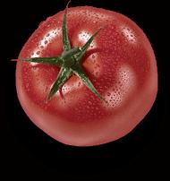 Tomate fraîche de Recettes Gourmandes